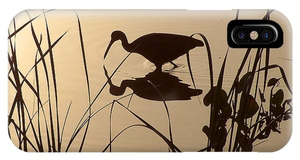 Limpkin At Dawn IPhone Case
