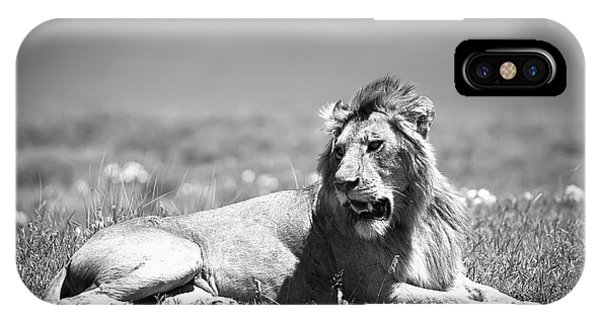 Lion King In Black And White IPhone Case