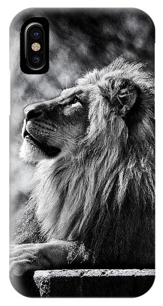 Lion Meditating IPhone Case