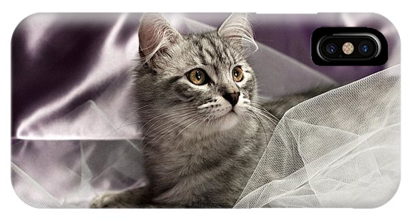 Little Cat On Lilac IPhone Case