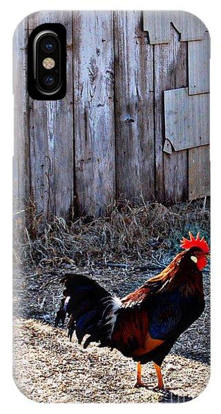 Little Red Rooster IPhone Case