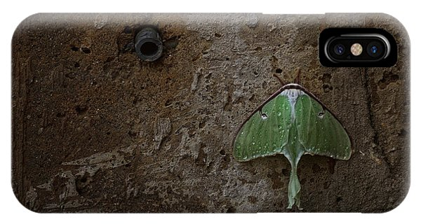 Drain iPhone Case - Loitering by Susan Capuano