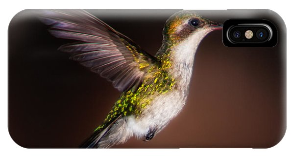 Lone Hummingbird IPhone Case