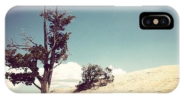 Cause iPhone Case - Lonely Tree by Isabel Poulin