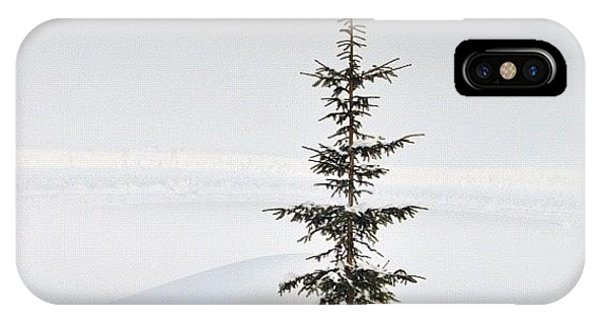 Funny iPhone Case - Lonely Tree by Matthias Hauser