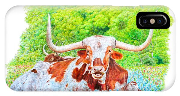 Longhorns In Bluebonnets IPhone Case