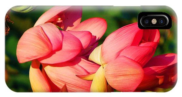 Lotus Breeze IPhone Case