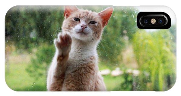 Buy Art Online iPhone Case - Lovely Cat by Augusta Stylianou