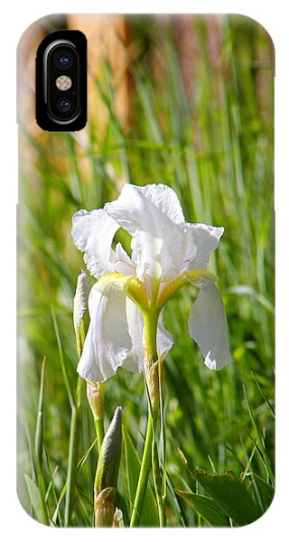 Lovely White Iris In Field Of Grass IPhone Case