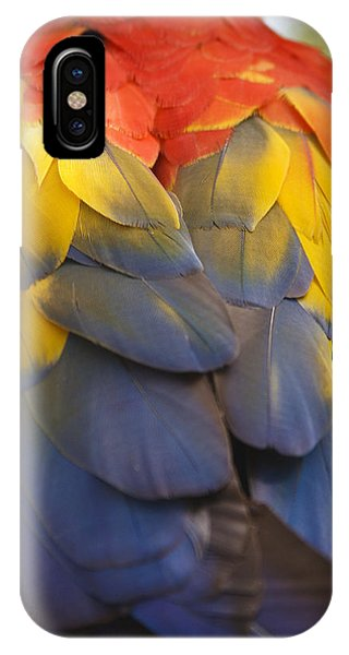 Macaw iPhone Case - Macaw Parrot Plumes by Adam Romanowicz