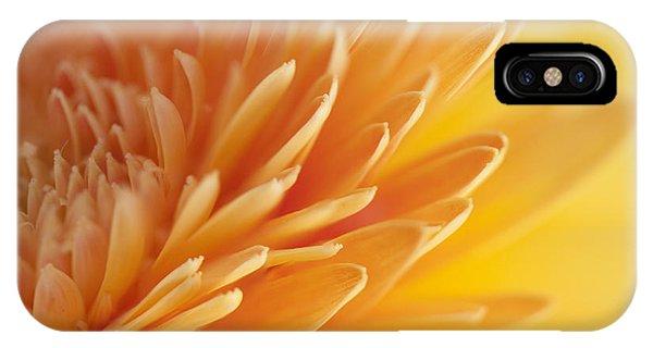 Macro Of Petals IPhone Case