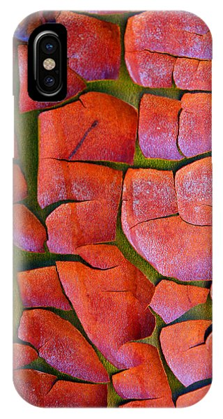 Madrone IPhone Case