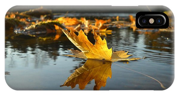 Maple Leaf Floating In River IPhone Case