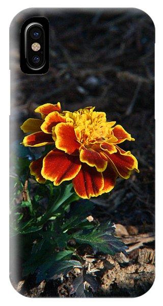 Crossville iPhone X Case - Marigold At Sunset by Douglas Barnett