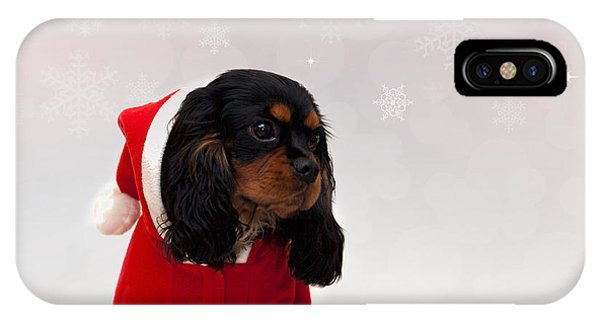 King Charles iPhone Case - Marmaduke On Snow Background by Jane Rix