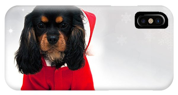 King Charles iPhone Case - Marmaduke With Snowflake Background by Jane Rix