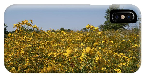 Meadow At Terapin Park IPhone Case