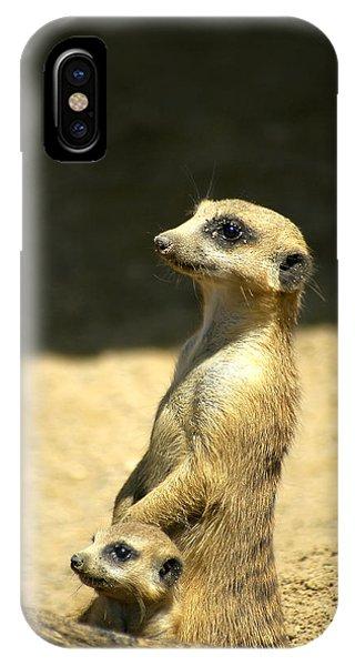 Meerkat Mother And Baby IPhone Case