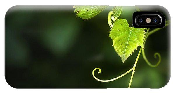Grape iPhone X Case - Memories Of Green by Evelina Kremsdorf