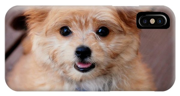 IPhone Case featuring the photograph Mi-ki Puppy by Angie Tirado