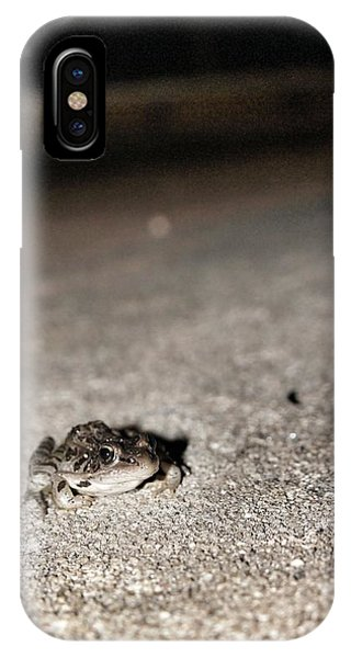 Midnight Frog IPhone Case