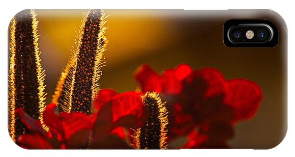 Millet At Sunset IPhone Case