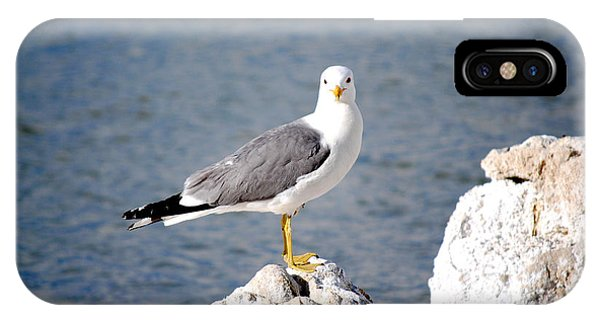 Mono Seagull Phone Case by Sean McGuire