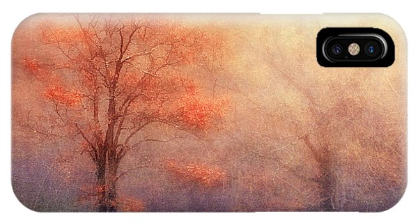 Moods Of Autumn IPhone Case