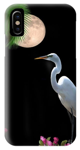 Uas iPhone Case - Moon Over Florida by Betty LaRue