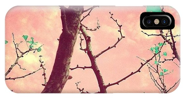 Surrealism iPhone Case - More Fun by Courtney Haile