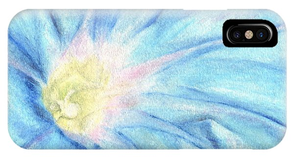 Close Up Floral iPhone Case - Morning Glorious by Iris M Gross