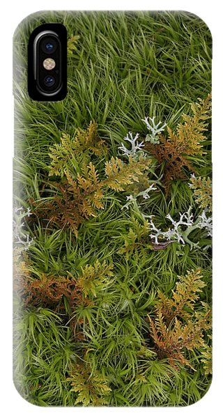 Moss And Lichen IPhone Case