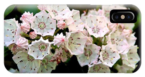 Mountain Laurel Flowers IPhone Case