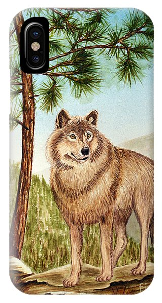 Mountain Wolf IPhone Case
