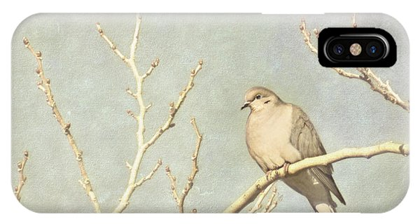 Mourning Dove In Winter IPhone Case