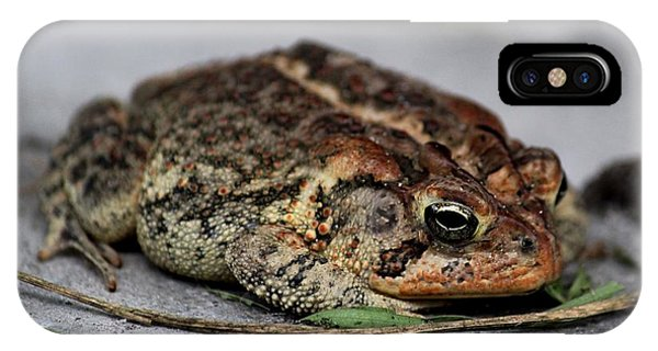 Mr Toad IPhone Case