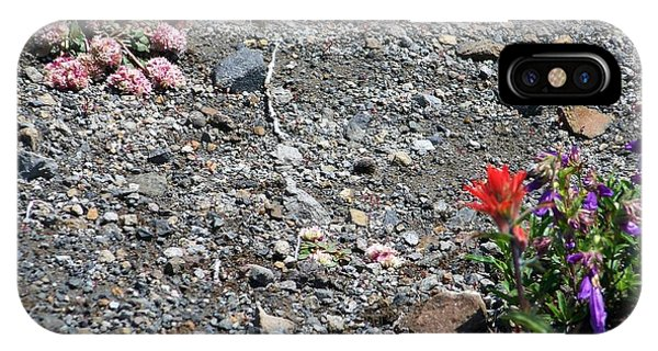 Scarlet Paintbrush iPhone Case - Mt St Helens Volcano Flowers by Charles Robinson