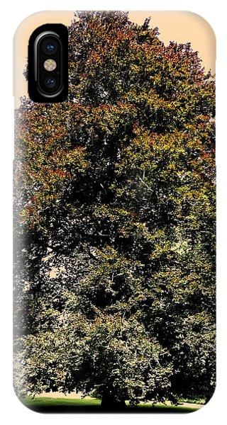 Sonne iPhone Case - My Friend The Tree by Juergen Weiss