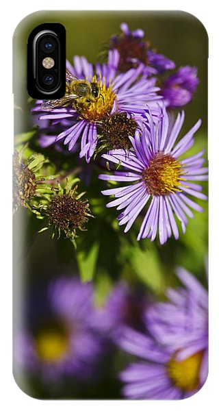 Nectar Gathering IPhone Case