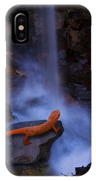 Newts iPhone Case - Newt Falls by Ron Jones