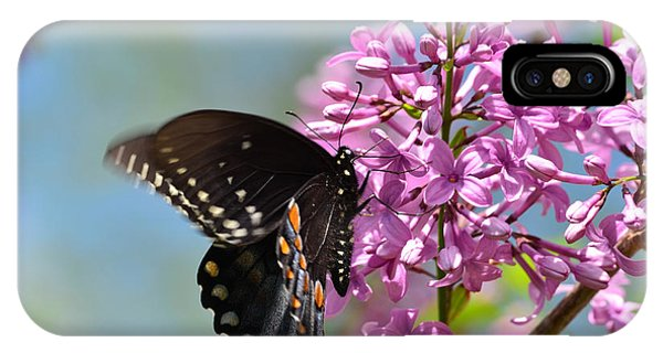 Nothing Says Spring Like Butterflies And Lilacs IPhone Case