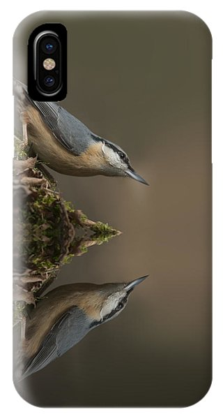 Nuthatch Reflection IPhone Case