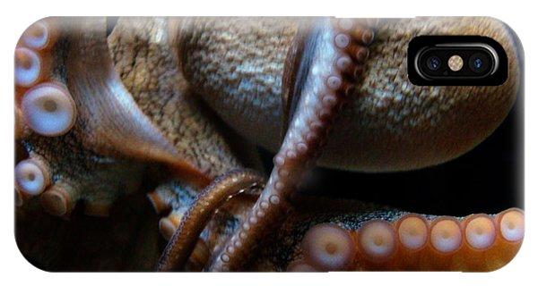 Octopus 1  IPhone Case