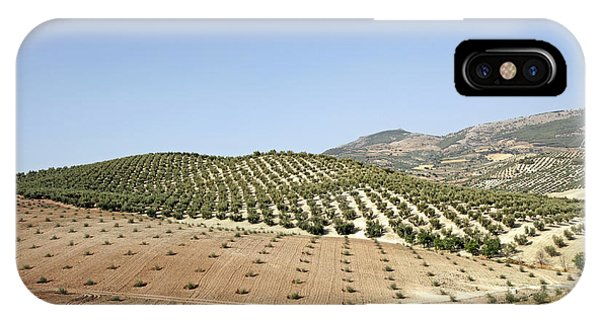 Olive Groves IPhone Case