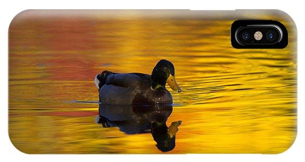Mallard iPhone Case - On Golden Waters by Mike  Dawson