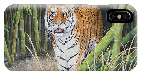 On The Prowl  Sold Prints Available IPhone Case