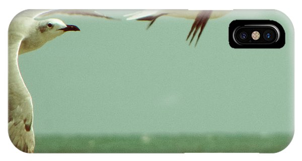 On The Wings Of A Seagull IPhone Case