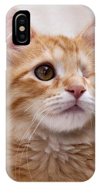 One Eye Willie 2 IPhone Case