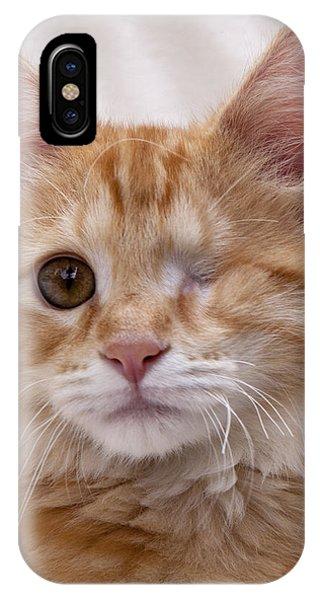 One Eye Willie IPhone Case