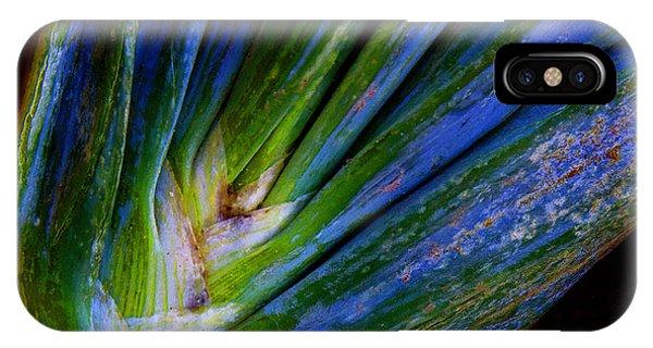 Onions Phone Case by Michael Friedman